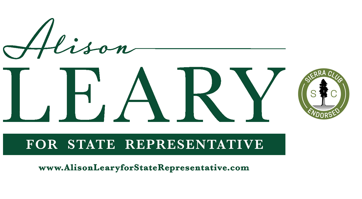 Alison Leary for State Representative